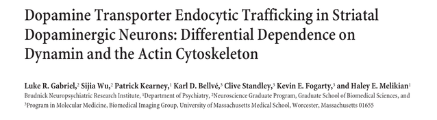 Dopamine Transporter Endocytic Trafficking in Striatal Dopaminergic Neurons: Differential Dependence on Dynamin and the Actin Cytoskeleton