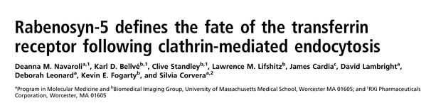 Rabenosyn-5 defines the fate of the transferrin receptor following clathrin-mediated endocytosis