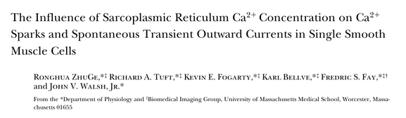 2ϩ 2ϩ The Influence of Sarcoplasmic Reticulum Ca Concentration on CaSparks and Spontaneous Transient Outward Currents in Single Smooth Muscle Cells